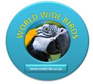 WorldWideBirds